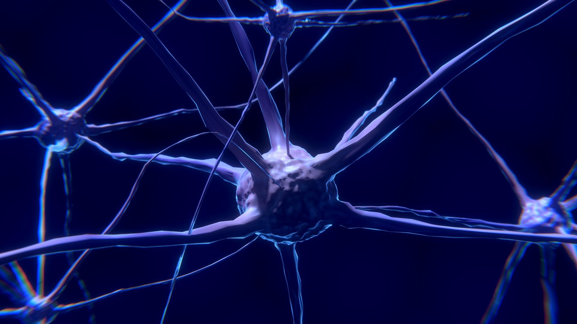Comment utiliser la science du conditionnement Neuro associatif